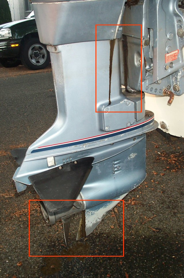 Yamaha  Stroke Outboard Leaking Oil From Prop